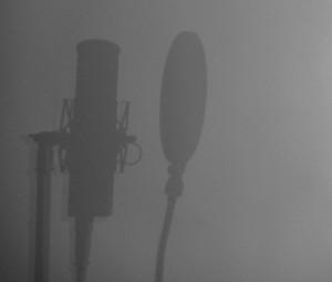 Einen professionelle Sprecher mit eigenem Studio online finden!